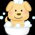 犬が炭酸泉に気持ちよさそうに入っているイラスト